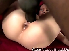 Little Asian beauty takes big black rod
